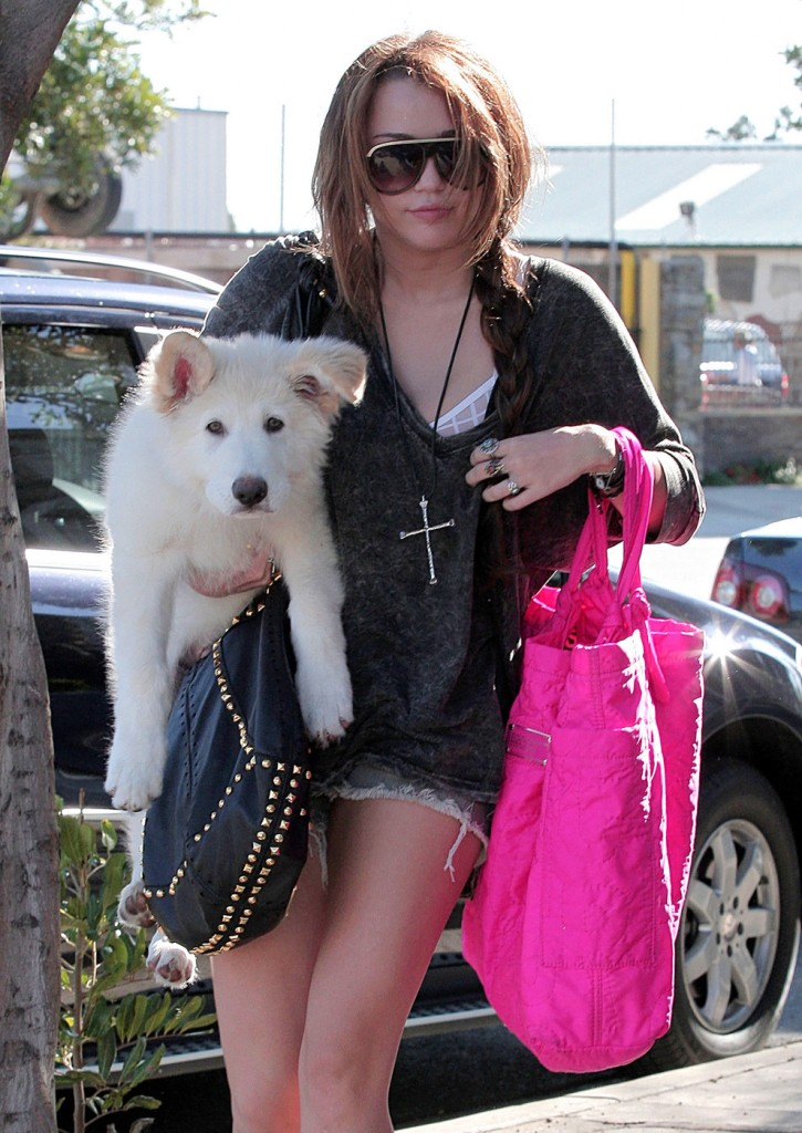 Miley Cyrus and Dog mate